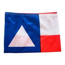 Bandeira-Estado-da-Bahia-33x47-Imagem01